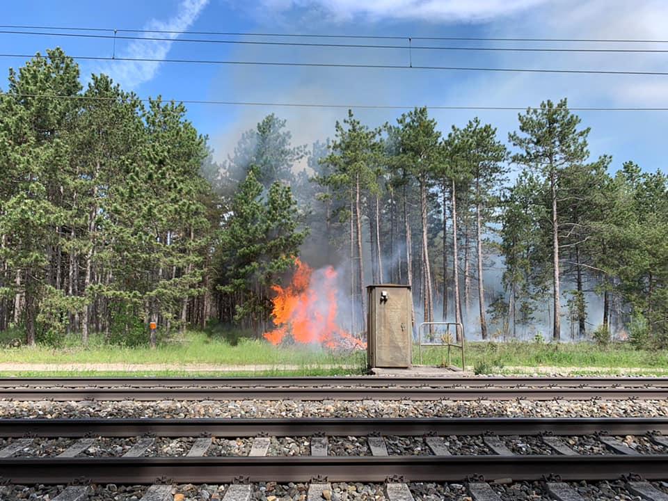 Waldbrand Föhrenwald am 21.05.2021