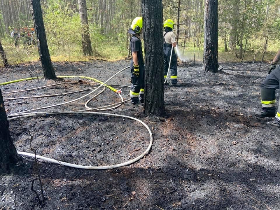 Waldbrand Föhrenwald am 13.07.2021